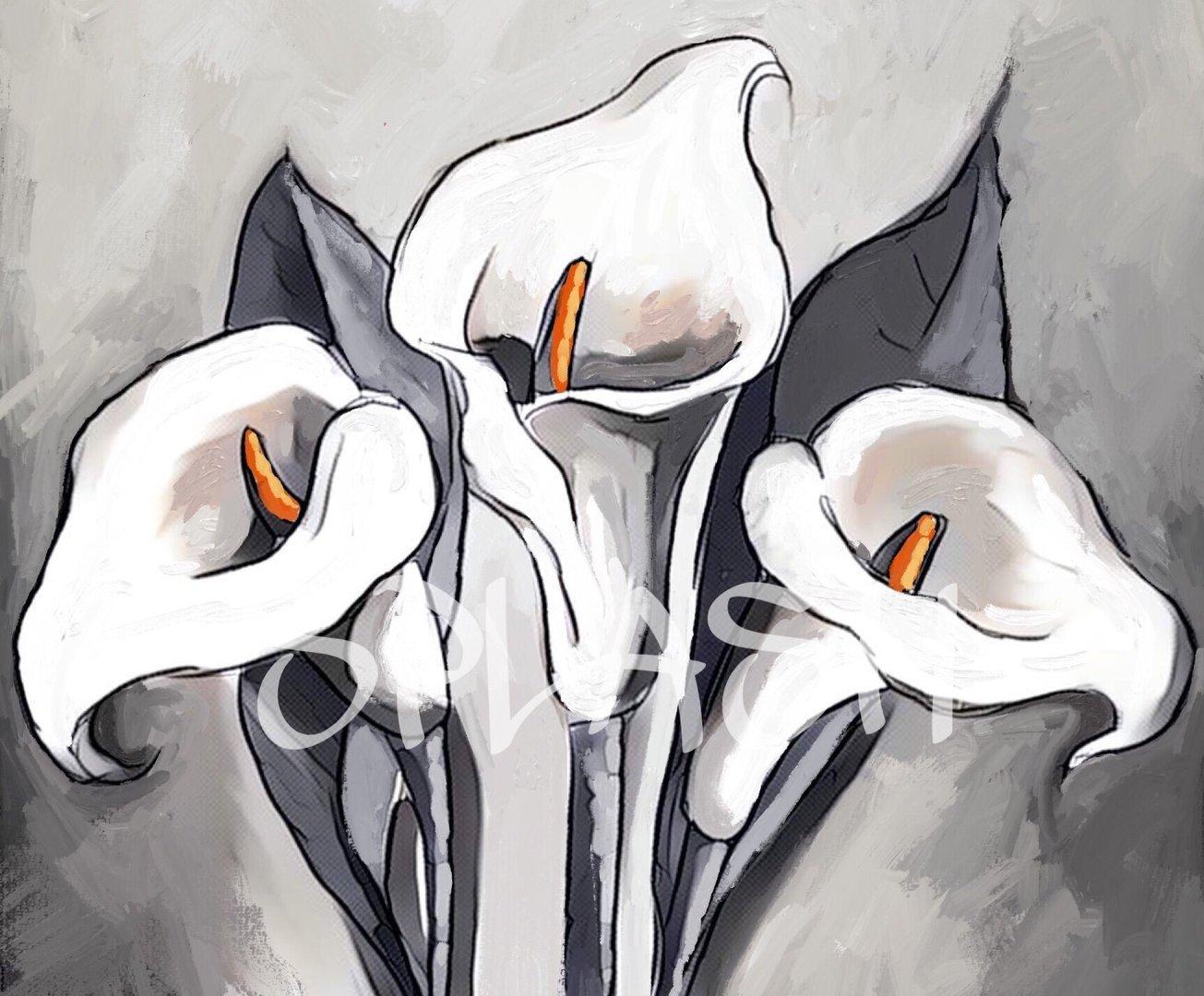 Cuadros De Flores Calas Blanco Y Negro