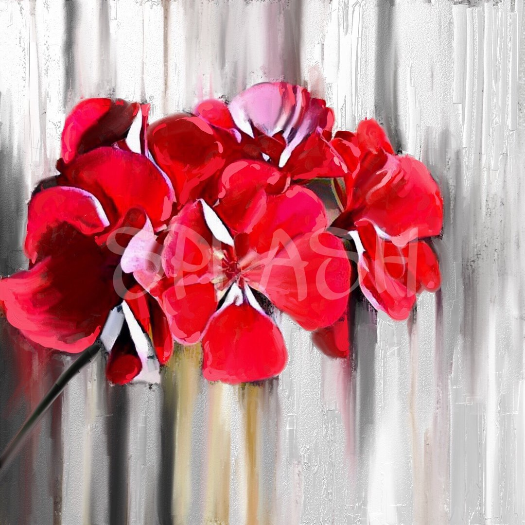 Cuadros De Flores Flor Geranio Rojo 1 Tiendas De Cuadros Modernos Splash